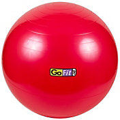 GoFit 55 cm Exercise Ball