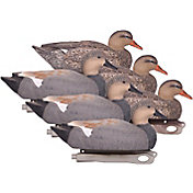 Hard Core Gadwall Duck Decoy – 6 Pack