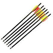 PSE Insight Crossbow Bolt – 6 Pack