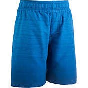 Under Armour Boy's Dipper Volley Shorts